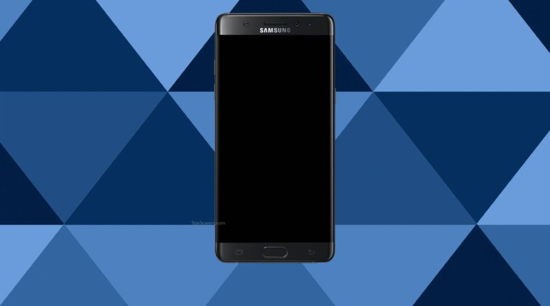 Samsung Galaxy Note Fan Edition Screen
